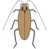 【デフォルメ】チャバネゴキブリ(真上)