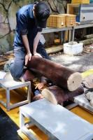 先輩の方がキツめの仕事をする桂浜水族館。
