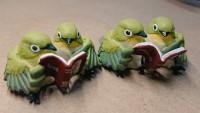 メジロちゃんは読書中のようです