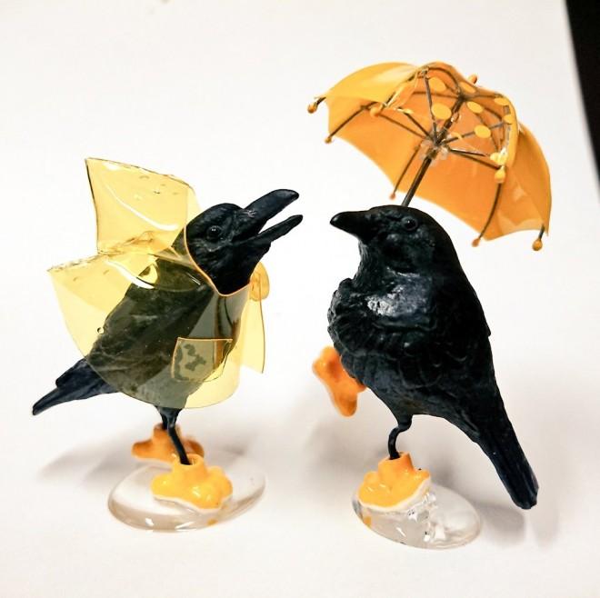 雨の日のカラスたち。真っ黒だけどカワイイ!