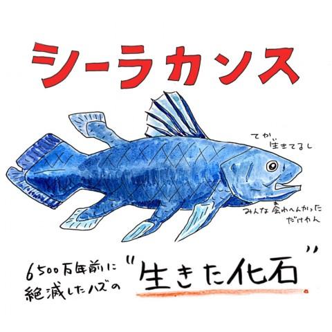 画像提供:川田一輝さん