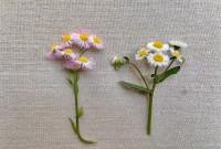 雑草や落ち葉などで作られた草花あそび作品