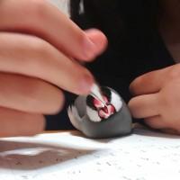 「勉強中は、モフの目の前を、ペン等が横切ってはならないという、厳しい指導。」