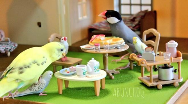 「トリあえず、今週末もステイホーム」 ABUNCHOOさんTwitter(@abunchoo_bird )より