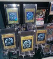 Ray Chan氏『遊戯王』カードコレクション
