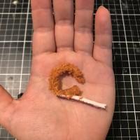 脱皮するイカリング(小麦粘土)