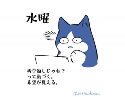 水曜「働く猫の1週間」