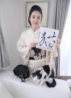 藤さんの2020年を表す漢字は「猫」!(画像提供:藤あや子さんTwitterより)