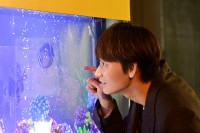 日本テレビ系連続ドラマ『恋はDeepに』場面カット