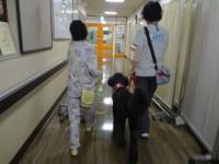小児病棟でリハビリとして一緒に歩行訓練するミカ