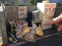 「ゴミ捨て場」(画像提供:Mozuさん)