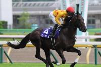 小田切氏所有の珍名馬『カラテ』