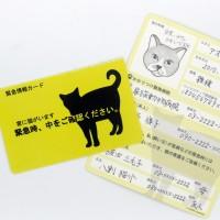 「家に猫がいます」カード商品イメージ