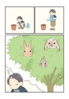 「うさぎの木」【3】