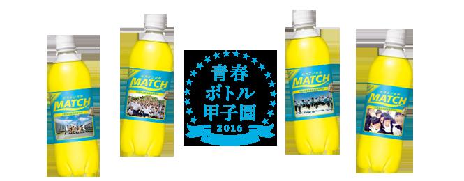 青春ボトル甲子園