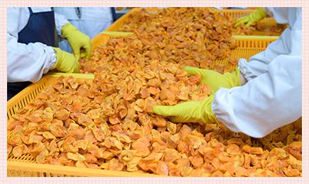 韓国産干し柿を生産するネイチャーファーム