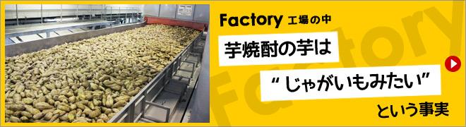 "Factory <工場の中> 芋焼酎の芋は""じゃがいもみたい""という事実"