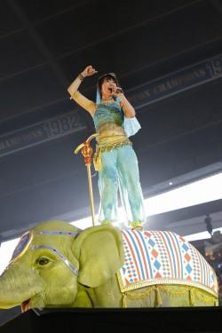 """象の""""ナンボ""""の上で歌唱"""