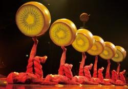超絶パフォーマンスに釘付け!『OVO』より Costumes : Liz Vandal c 2013 Fuji Television Photo : Benoit Fontaine Costumes : Liz Vandal c 2009 Cirque du Soleil