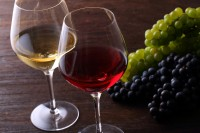 柳沼淳子 ワイン・成熟した時間
