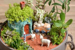 ジオラマ×観葉植物 テーマ:アルパカの親子 作者:福井崇史