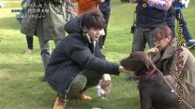 間宮祥太朗、犬との撮影現場に癒やされる?『高台家の人々』メイキング独占公開!