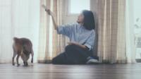 """満島ひかりが鎌倉にお引越し!? 新CMで誰もが憧れる""""理想の新生活""""の主人公に"""