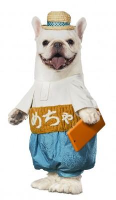 (C)めちゃ犬