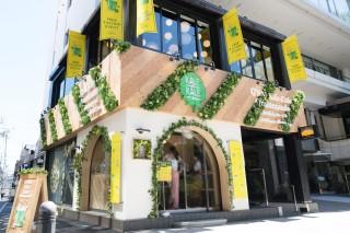 緑に囲まれた「Q'SAI Kale Cafe 表参道」の入口