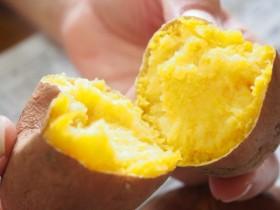ホクホクからネットリへ、進化する「石焼き芋」の新潮流