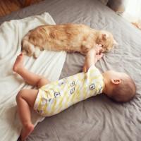 """人気猫""""ぷー""""と赤ちゃんの絆に反響、「すっかりお兄ちゃん」「癒される」の声"""