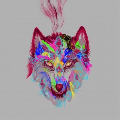 2ndシングル「一匹狼」通常盤ジャケット写真