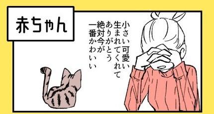 「猫、常に世界一かわいい」(画像提供:なごさん @ikng_0)