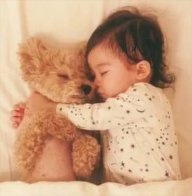 トイプードルと女の子の添い寝動画が500万再生、一緒に成長することで育まれた優しさ