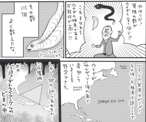 """ようやく特定した産卵場は、昔から多くの船が消えたといわれる""""魔の海域""""ど真ん中だった…! 提供:松本ひで吉さん"""
