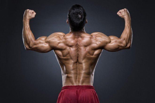 逆三角形の身体を作る広背筋の鍛え方