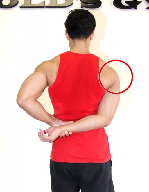 肩(三角筋)側部のストレッチ 右肩