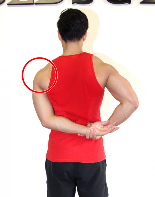 肩(三角筋)側部のストレッチ 左肩