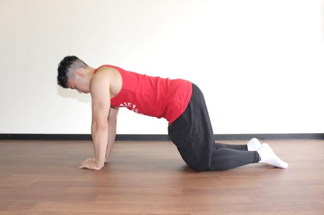 1.床に手と膝をついて四つん這いになる。手のひらは肩幅よりも少し狭く、手幅が拳1つ分程度になるように保ち脇を閉める。
