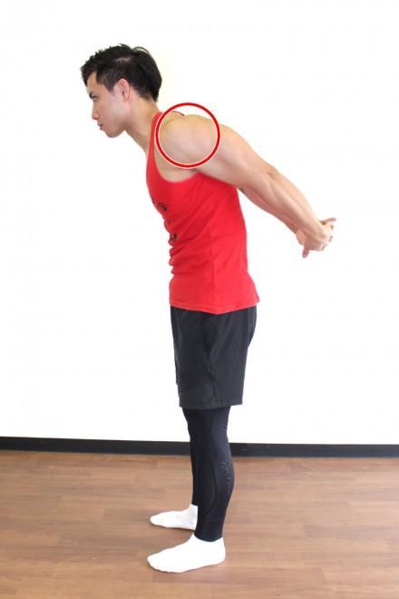 肩(三角筋)前部のストレッチ 背中の後で手を組み両腕を後方に伸ばし、肩前部をストレッチする。