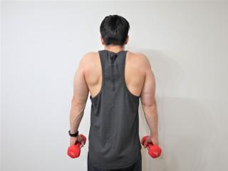 背筋を鍛える際の僧帽筋を鍛えるダンベルシュラッグの動作 2.首をすくめるように肩を上にあげる。(背面)1→2を繰り返す。