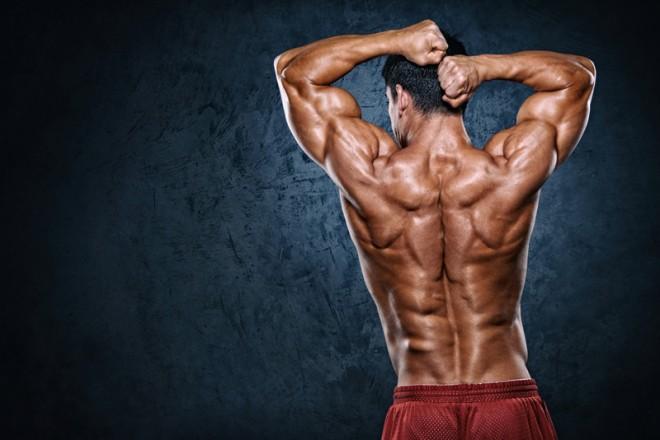 背筋(背中)をダンベル・自重で効率良く鍛える方法【プロが教える背中の筋トレ】