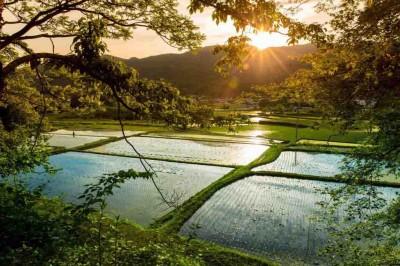 柚野(ゆの)の美しい景色