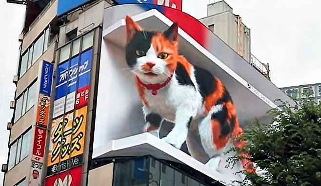 クロス新宿ビジョンに現れた巨大猫の3D映像(公式YouTubeより)