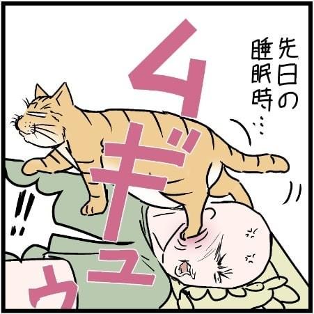 飼い主さんが横になってもおかまいなし、顔を踏んでいく猫のミュウくん(画像:@covovoy)