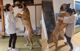 飼育放棄された大型犬、住居を改築して引き取った飼い主の思い