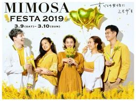 ミューズ(女神)として高橋メアリージュンを迎え、女性を祝福するイタリアのお祭り『MIMOSA FESTA 2019』開催