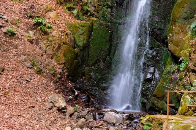 サムネイル 実は滝の町って知ってた!?湯河原温泉で滝めぐりを楽しもう