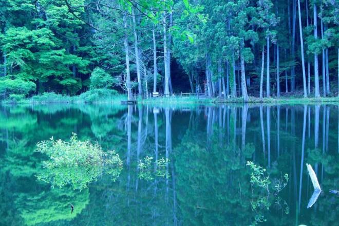サムネイル 龍王ヶ渕、深谷龍鎮渓谷も!奈良県宇陀のパワースポット4選