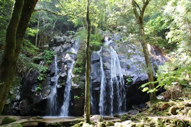 サムネイル 京都屈指の名瀑!「金引の滝」でリフレッシュしよう